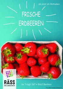 frische Erdbeeren 2021